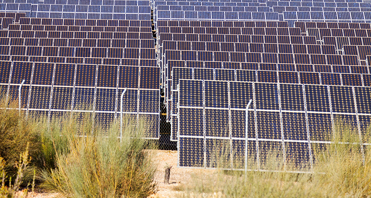 India's first auction for solar and storage combination completed